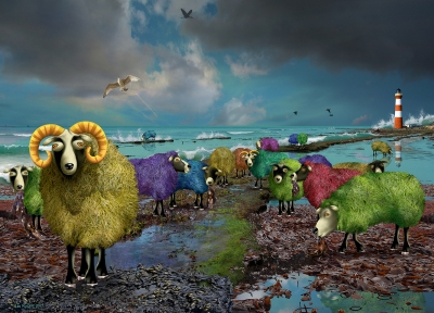 Beach Sheep
